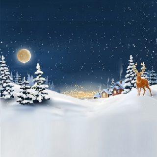 Winter Wonderland Vinyl Backdrop