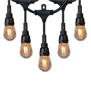 Indoor/Outdoor String Lighting