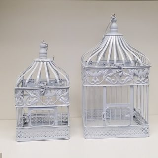 Square Bird Cage Rental